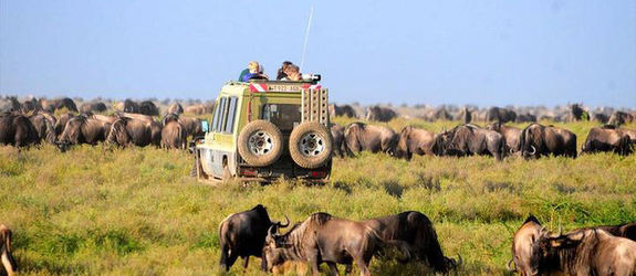 Mombasa Short Tours, Full Day, 1 Night Excursions